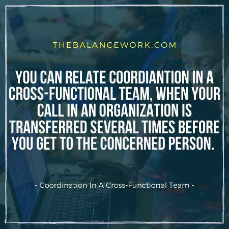 Coordination In A Cross-Functional Team