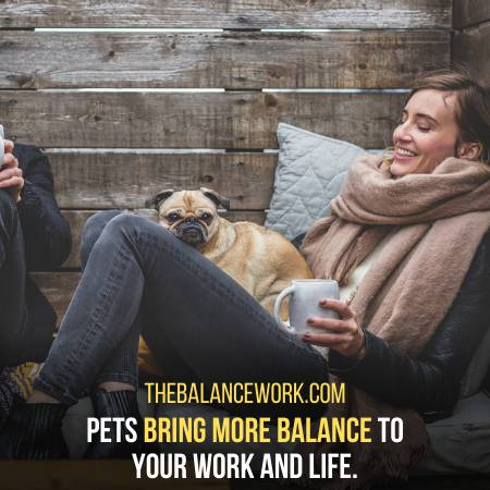 You Can Better Control Your Work And Life