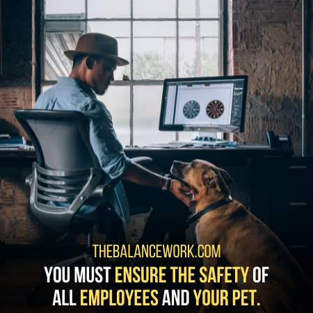 Why Should Pets Be Allowed In The Workplace